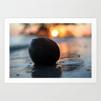Coconuts for sunsets Art Print
