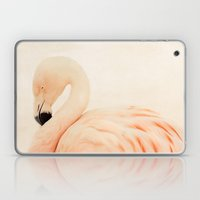 Pink Flamingo Laptop & iPad Skin