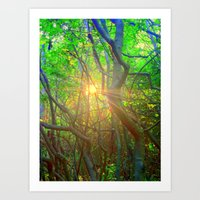 Peeking Sun  Art Print