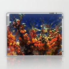 infinite fruits Laptop & iPad Skin