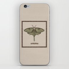 Luna Moth iPhone & iPod Skin