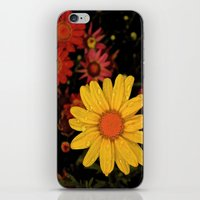 Rise Above iPhone & iPod Skin