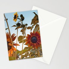 Red Sunflower... Stationery Cards