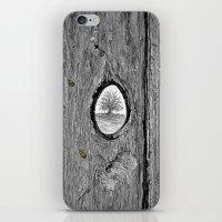 LADYBUGS1113 iPhone & iPod Skin