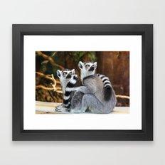 lemurs Framed Art Print