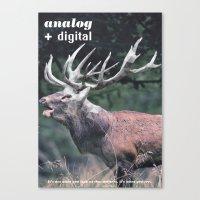 Analog + Digital Canvas Print