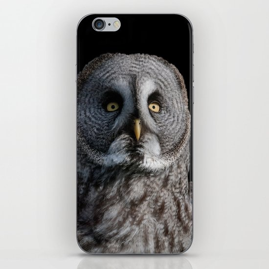 GREY OWL iPhone & iPod Skin
