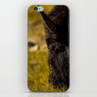 Bison iPhone & iPod Skin