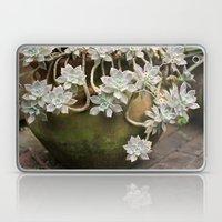 Ghost Plant 2 Laptop & iPad Skin