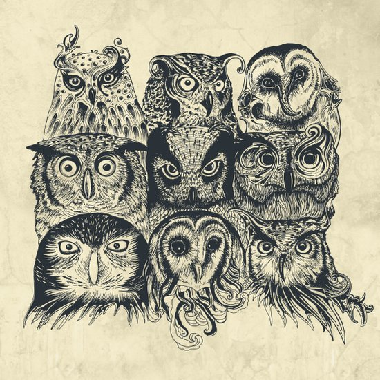 Nine Owls Art Print