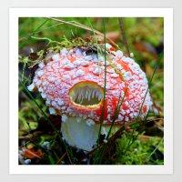 Killer Mushroom Art Print