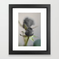A Black Rose for your Sweetheart Framed Art Print