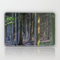 Fairytale Forest Laptop & iPad Skin