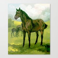 Sound Reason (CAN) - Thoroughbred Stallion Canvas Print