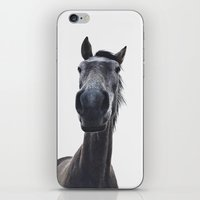 Simply horse iPhone & iPod Skin