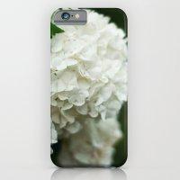 Snowball Bush iPhone 6 Slim Case