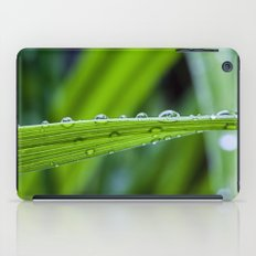 spring rains iPad Case