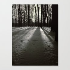 Wooded Winter Canvas Print