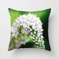 Spring has Bloomed Throw Pillow