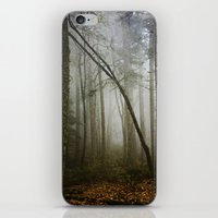 Misty Woods iPhone & iPod Skin