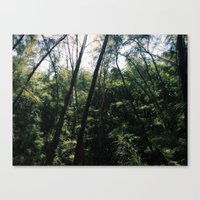 Virginia Key Canvas Print