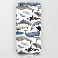 iPhone Cases featuring Whale Song by Isabelle Sykes