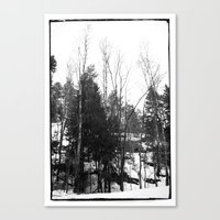 Norwegian forest VII Canvas Print