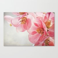 Canvas Print featuring Beautiful Gift by Lawson Images