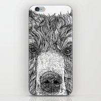 Bear iPhone & iPod Skin
