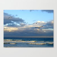 CoffsHarbour 9 Canvas Print