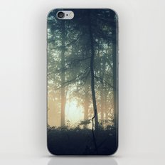 Find Serenity iPhone & iPod Skin