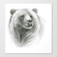 Grizzly Bear G2012-057 Canvas Print