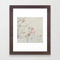 Pink Dogwood Flower Bota… Framed Art Print