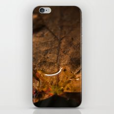 Drop iPhone & iPod Skin
