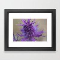 Purple Explosion Framed Art Print