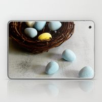 Robin's Eggs and Nest Laptop & iPad Skin