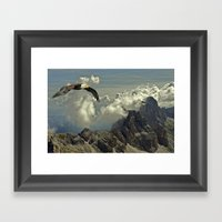 Bird Of Prey Framed Art Print