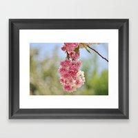 Spring Bundle Framed Art Print