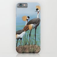 gru pavonina iPhone 6 Slim Case