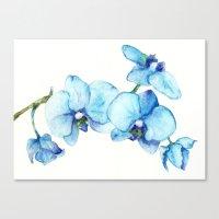 Blue Orchids - Watercolor Canvas Print