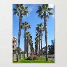 San Diego California Palm Trees Canvas Print