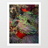 Domino Damselfish in Anemone Art Print
