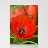 Wild Red Poppies Stationery Cards