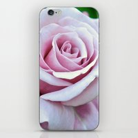 Blushing Bloom iPhone & iPod Skin