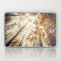 Misty Autumnal Heights Laptop & iPad Skin