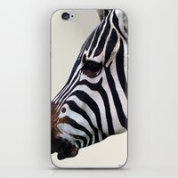 Zebra Love iPhone & iPod Skin