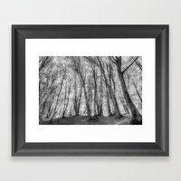 The Ghost Forest Framed Art Print