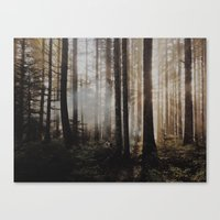 Sunrise through the woods Canvas Print