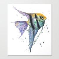 Angelfish, tropical fish, angel fish, animal art prints Canvas Print