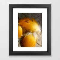 Yellow Feathers Framed Art Print